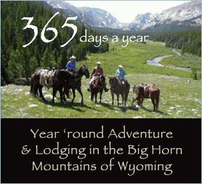 wyoming cabins bighorn mountains national forest buffalo ten sleep wy