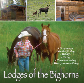 wyoming cabins bighorns cloud peak wilderness bighorn national forest buffalo worland ten sleep