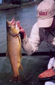 trout fishing big horns lodges buffalo ten sleep wy